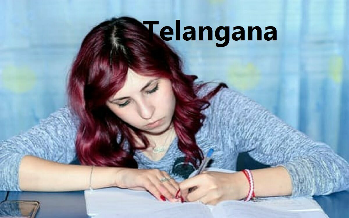 TS SSC Model Paper 2020 TS 10th Important Question & Exam Pattern 2020